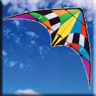 Firestorm 1.83m Sports Kite - Dual Control Strings