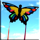 Monarch Butterfly Kite - Single String